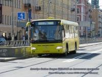 Санкт-Петербург. Golden Dragon XML6112 ах343