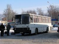 Таганрог. Ikarus 256 AH4537CE