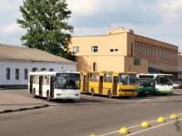 Великий Новгород. Mercedes O345 ав672, Ikarus 280 ае099