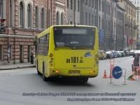 Санкт-Петербург. Golden Dragon XML6112 ан101