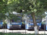 Ростов-на-Дону. DAF B79T-K560 №0166, DAF B79T-K560 №0161