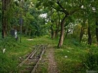 Ужгород. Станция Парк Ужгородской детской железной дороги (Малая Закарпатская, Ужгородська дiтяча залiзниця)