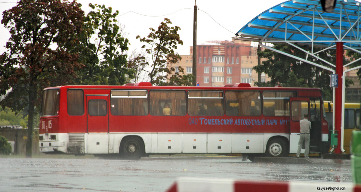 Могилев. Ikarus 250.59 EA8005