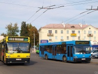 Могилев. МАЗ-105 TC0800, МАЗ-103.065 TC4949