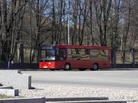 Выборг. МАЗ-206 в517те