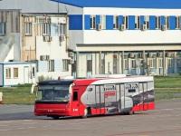 Борисполь. Cobus 3000 №442