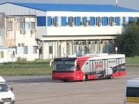 Борисполь. Cobus 3000 №447