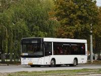 Таганрог. МАЗ-206.063 ск346