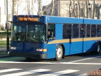 Gillig Low Floor №204