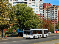 Киев. МАЗ-105.060 054-89KA