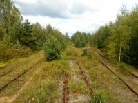 Тверь. Слева - линия на станцию Доронинская, справа - нерабочие подъездные пути к цементному заводу, стрелки на завод демонтированы