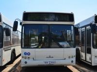 Ростов-на-Дону. Один из новых автобусов МАЗ-103 (8BK 9663)
