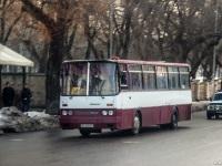 Одесса. Ikarus 256.54 BH2650BA