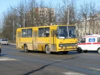 Великий Новгород. Ikarus 260.50 ас206