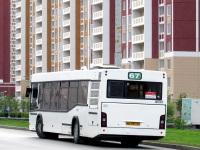 Ростов-на-Дону. МАЗ-103.485 кв397