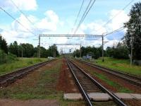 Кириши. Станция Пчёвжа