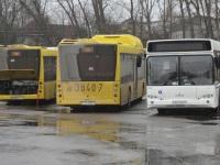 Минск. МАЗ-203.С65 AO3840-7, МАЗ-203.169 AH8321-7, МАЗ-103.564 AO2249-7