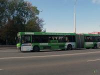 Брест. МАЗ-105.065 AE7631
