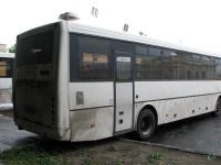 Ярославль. ГолАЗ-5256.23-01 ве967