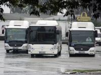 Простеёв. SOR CNG 12 4M9 3690, Irisbus Citelis 12M CNG 5M2 6024, SOR CNG 12 4M8 2763