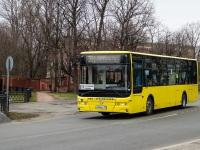 Санкт-Петербург. Golden Dragon XML6125CR в080му