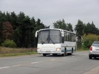 Старый Оскол. ПАЗ-4230 к324мх