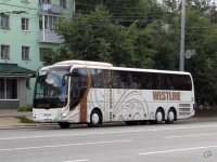 Владимир. MAN R08 Lion's Top Coach р533еу