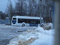 Электробус Витовт-Е420