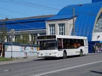 Мурманск. МАЗ-103.465 н050мт
