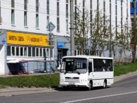 Мурманск. ПАЗ-320402-05 х600мх