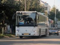 Ржев. ГолАЗ-622810-11 ем566