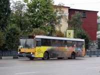 Воронеж. Wiima K202 х810тт