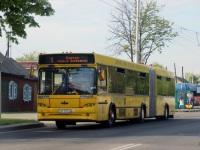 Гомель. МАЗ-105.465 AE2174-3