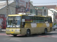 Анапа. SsangYong TransStar кт761