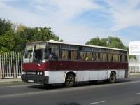 Анапа. Ikarus 256 в273ст