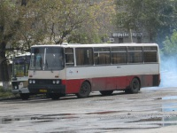 Ikarus 256.54 аа888