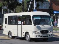 Анапа. Hyundai County SWB м703ох