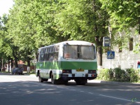 Суздаль. ПАЗ-3205 мт483