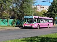 Владимир. Mercedes O405N х964мо