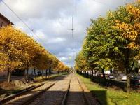Трамвайная линия