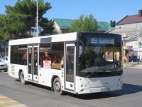 Анапа. МАЗ-206.060 р124сх