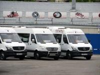 Mercedes Sprinter у111вт, Mercedes Sprinter у555ус, Mercedes Sprinter р999хк