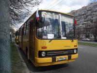 Санкт-Петербург. Ikarus 260.50 в795вк