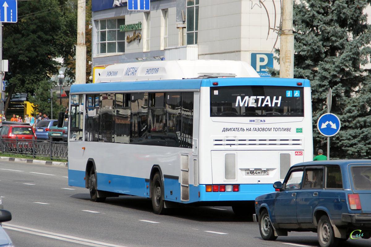 Белгород. НефАЗ-5299-30-31 (5299GN) н464мт