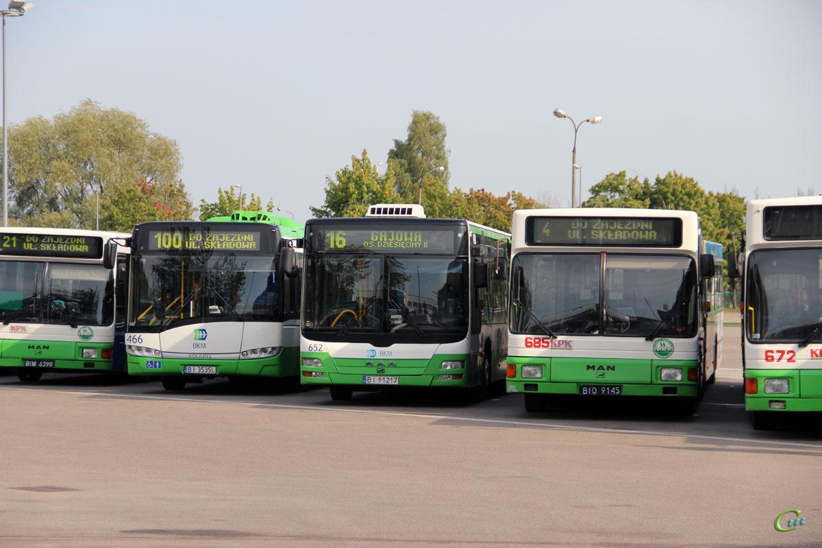 Белосток. Solaris Urbino 18 BI 3535L, MAN A23 Lion's City NG313 BI 91217, MAN A11 NG312 BIO 9145