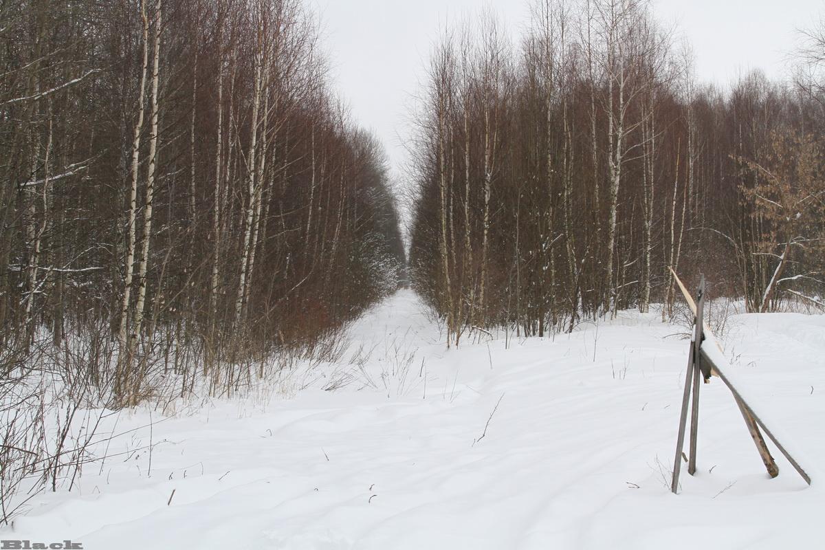 Рязань. Вид на бывшее перегоны Гуреевский - Тумская (прямо) и Гуреевский - Голованова Дача (направо), РВУЖД