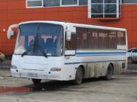 Курган. ПАЗ-4230-02 н800кт