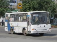 Курган. ПАЗ-4230-03 у238ет