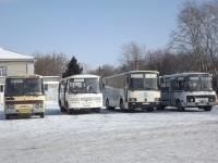 ПАЗ-4234 ву109, ЛАЗ-4207 о967ру, ПАЗ-4234 е114хв, ПАЗ-4234 р029хр
