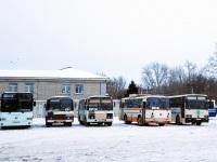 Каменск-Уральский. Автобусы различных моделей